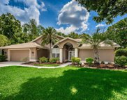 3354 Wedgewood Way, Tarpon Springs image