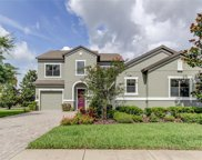 3407 Majestic View Drive, Lutz image