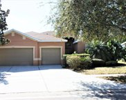 11427 Laurel Brook Court, Riverview image