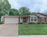 4921 Theiss Meadows  Drive, St Louis image