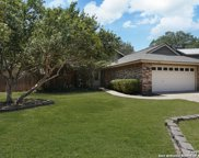 4326 Fig Tree Woods, San Antonio image