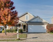 101 Coolmore Ct, Spring Hill image