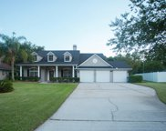 361 BELL BRANCH LN, St Johns image
