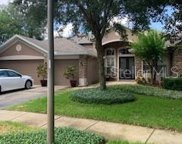 10521 Oakview Pointe Terrace, Gotha image
