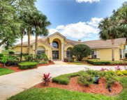 12512 Butler Bay Court, Windermere image