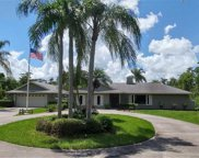 5080 Hawthorn Woods Way, Naples image